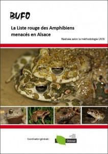 lr_amphibiens