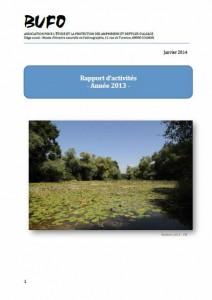 rapport_2013